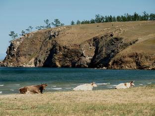 Фото достопримечательностей острова Ольхон на Байкале.