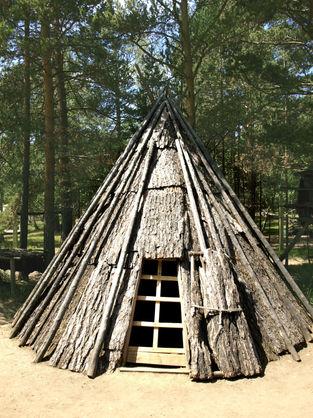 """""""Кедровая аллея"""", рядом с Визит-центром Байкальского заповедника. Чтобы увидеть это место, просто позвоните: 8-3952-67-66-90 и закажите экскурсию."""