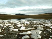Соленые озера.jpg