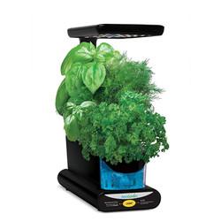 AeroGarden Sprout LED Indoor Garden