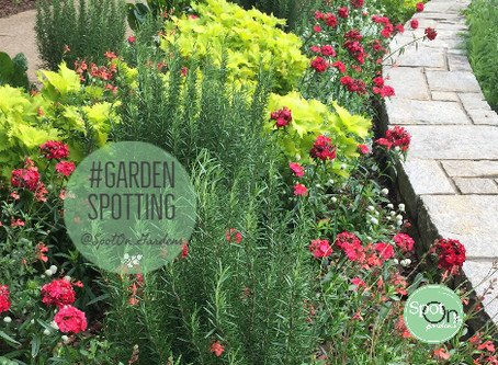 Follow My GardenSpotting Adventures