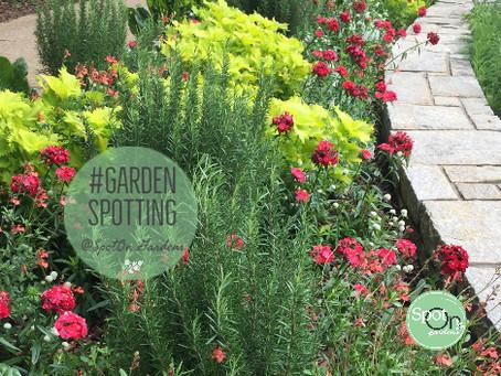 Follow My GardenSpotting Adventures