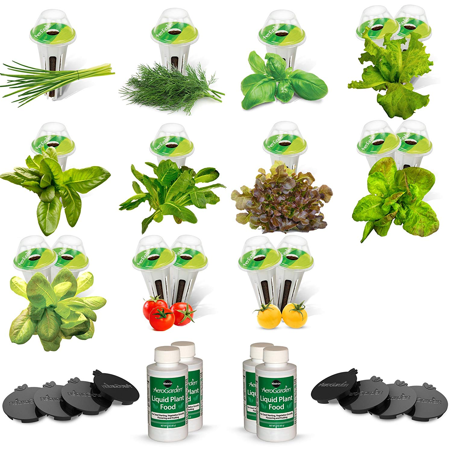AeroGarden Salad Bar Mix Seed Pod Kit 24