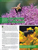 Image of published article