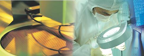 PERFREZ® Semiconductor Grade Series O-ring