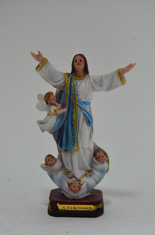 N. Sra. da Assunção - 15 cm