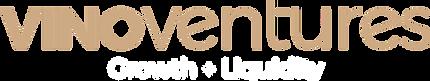 Logo for VV.png