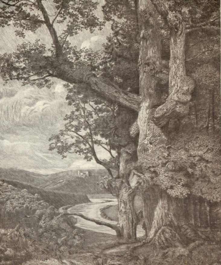 Viktor Olgyai, A Tolgy, etching