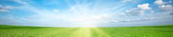 field-sun-clouds_edited