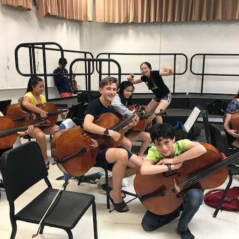 BMI cello sectionals