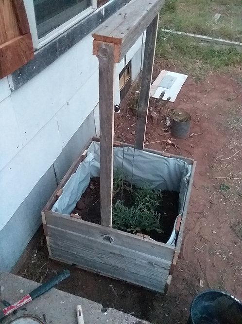 Tomato Planter Box