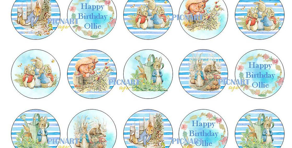 Peter Rabbit Inspired Edible Icing Paper Cupcake Toppers