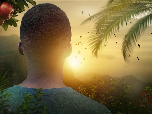 Ma nature profonde by Maïma. Prendre soin de soi avec l'or vert Afro-Ka'Ra'Ib.
