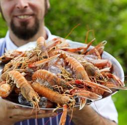 Colonsay seafood