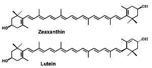 lutein-chemical.jpg