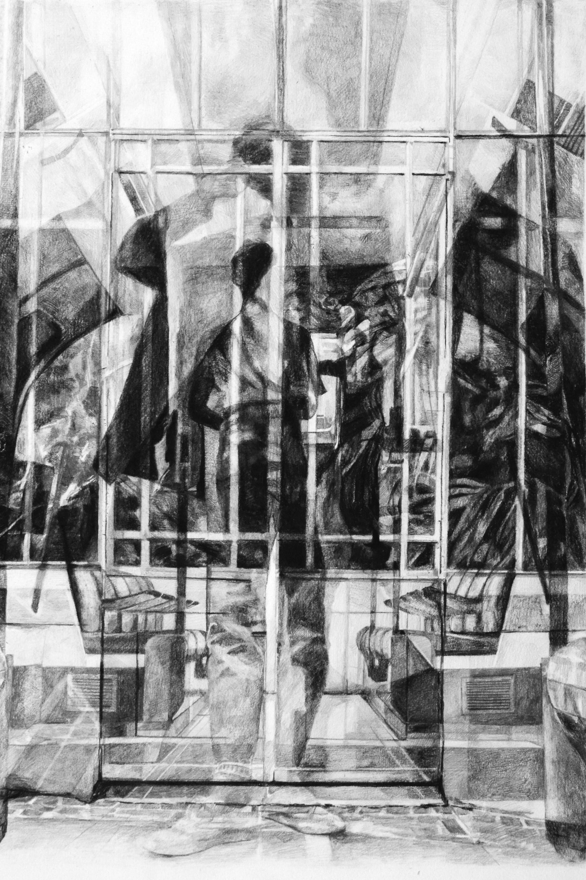 Grande serre, 2016, fusain et crayon sur papier, 70 x 50 cm