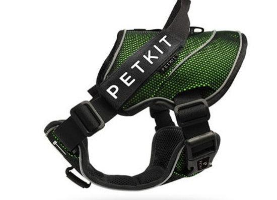 Petkit arnes verde/negro talla S