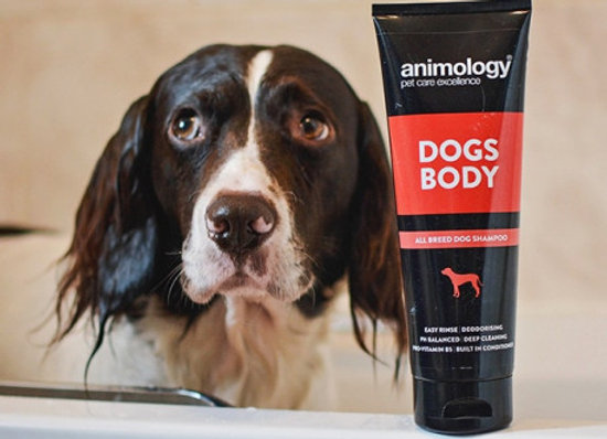 Animology Champu Perros Dogs Body 250ml