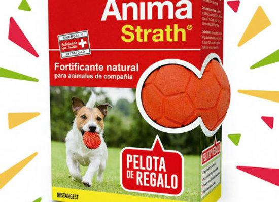 Stangest Anima Strath 100ml + Pelota Regalo