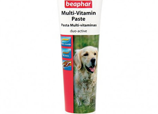 Pasta Multi-Vitaminas Perro 100 G Beaphar