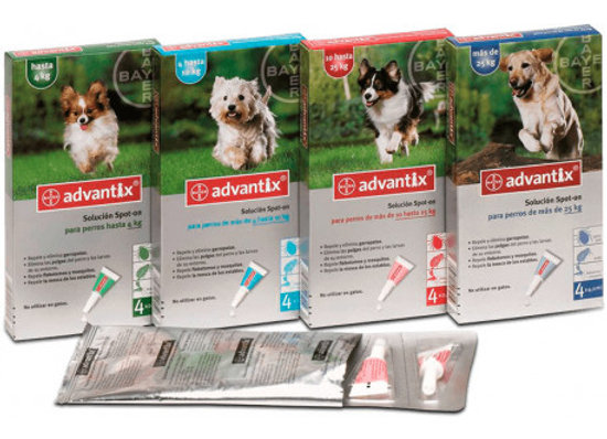 Advantix Bayer (4p) 1-4kg nacional
