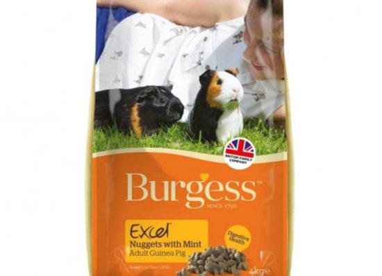 Burgess excel cobaya con menta 4 kg