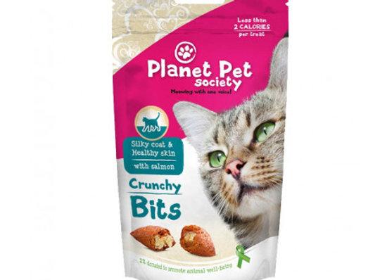 Planet Pet Gato Bits pelo y piel 40gr