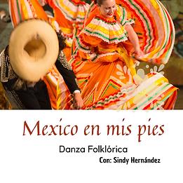 México en mis pies