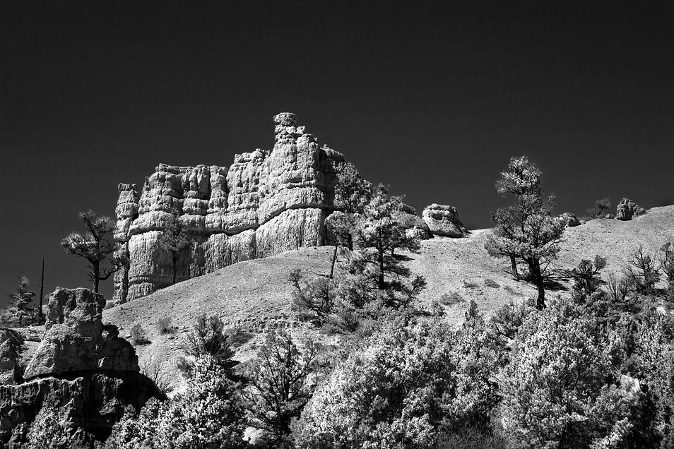 Zion infrared.jpg