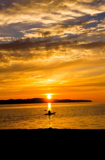 morning paddler.jpg