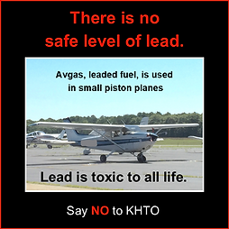 Piston and avgas.png