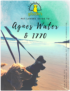 Pet Friendly Guide to Agnes Water & 1770