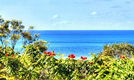 Kira Kira Ocean Views.jpg
