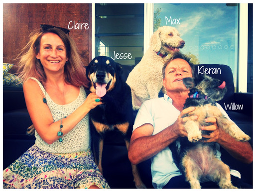 The Story Behind Gibson's Pet Friendly Accommodation
