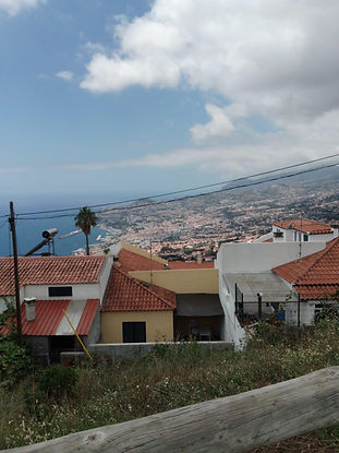 One Bedroom Apartment - Madeira