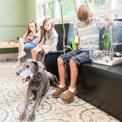 All Creatures Veterinary Charleston South Carolina 7
