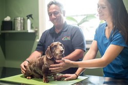 All Creatures Veterinary Charleston South Carolina 6