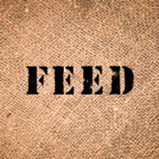 FEED Project.jpeg