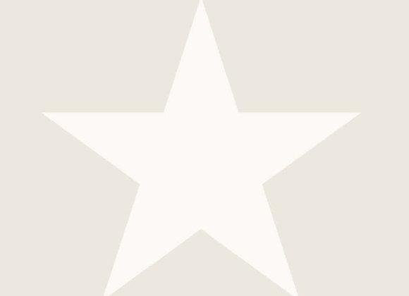PAPEL DE PAREDE | COLEÇÃO REGATTA CREW | REF. 136465