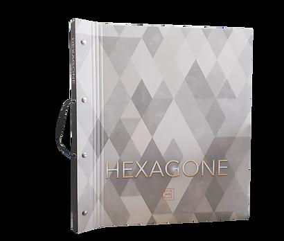 book hexagone.png