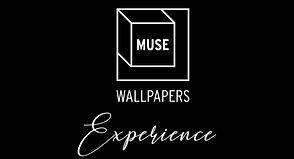 muse experience.JPG