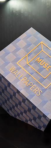Fernando Granzote na instalação da Muse Wallpapers no BOOMSPDESIGN