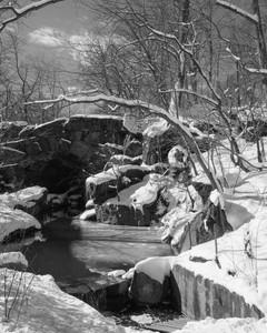 NYC SNOW10.jpg