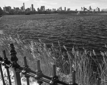 NYC-1-21.jpg