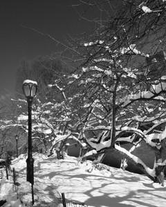 NYC SNOW3.jpg