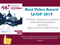 Pini urologia urology UROP 2019