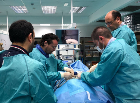 Tutor di chirurgia laparoscopica su cadavere a Malta al 5th & 6th UROLOGICAL ADVANCED COURSE (UA