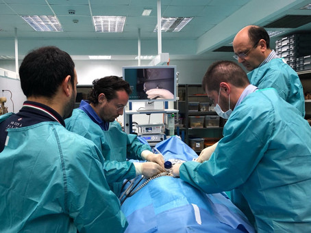 Tutor di chirurgia laparoscopica su cadavere a Malta al 5th & 6th UROLOGICAL ADVANCED COURSE (UA