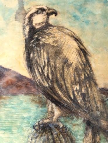 Osprey Encaustic set in resin