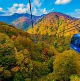 秋の八海山ロープウェー